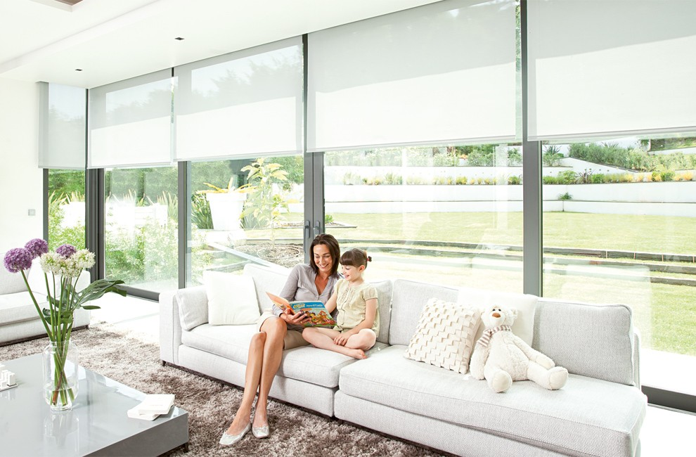 Electric Interior Blinds SOMFY Blind And